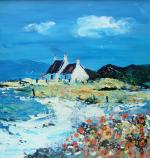 Machair Cottage in Springtime